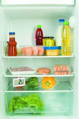 Дигитален термометър за вътрешна температура и хладилник / Арт.№30.2028.02